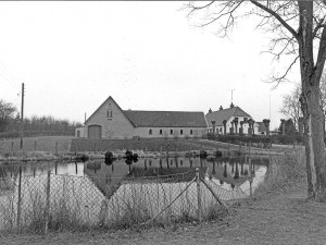 1 Lindegaard 1987